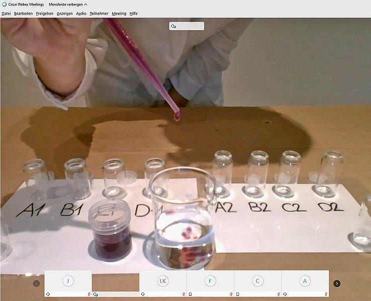 Videokonferenz und Bubble-Tea – digitales Lehr-Lern-Labor in Zeiten einer Pandemie